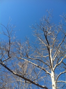 Blue-sky peace